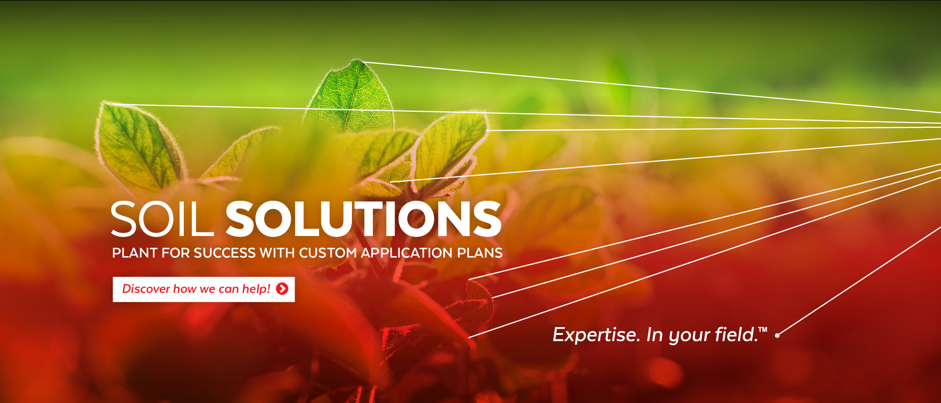 Soil Solutions | Plant For Success with Custom Application Plans