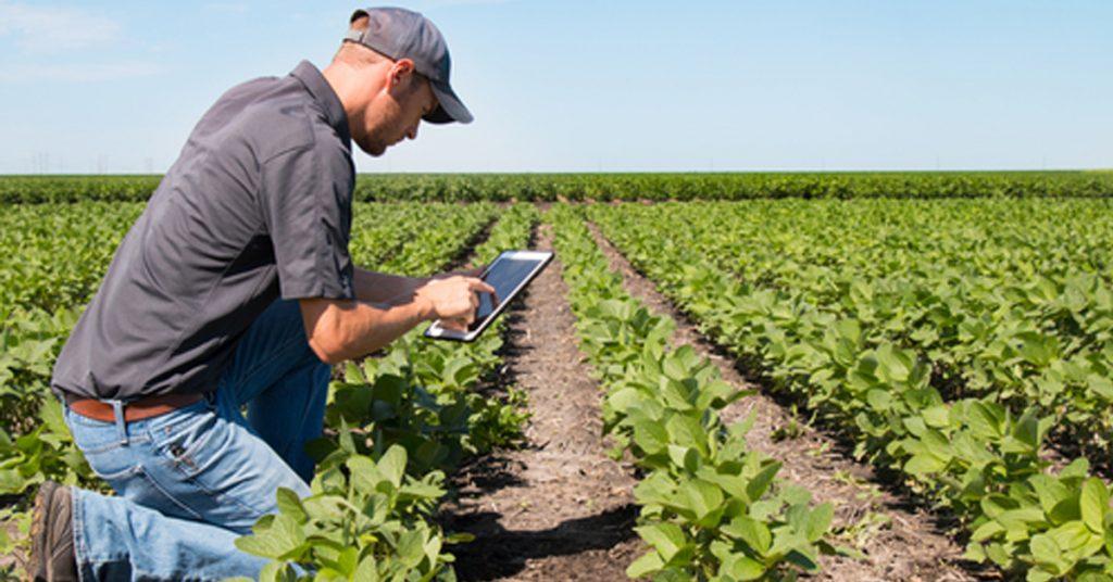 E4's 10 helpful tips for safe pesticide application